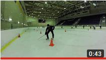 Мастерство хоккейного тренера Техника рук
