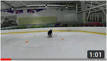 Школа вратарей Hockey Chance