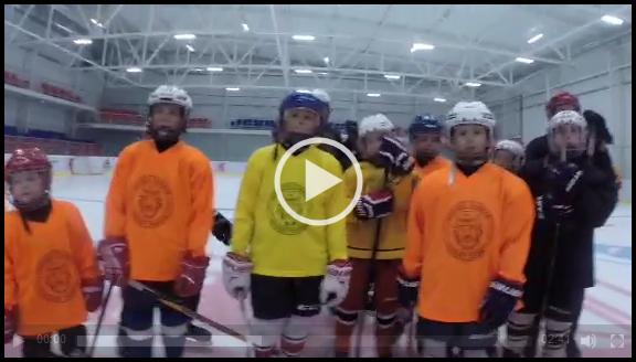 Секция хоккея для детей и взрослых Hockey Chance